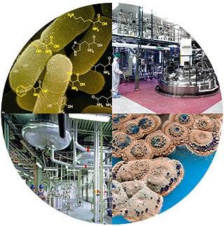 Toca Comer. españa segunda a nivel mundial  en biotecnología. Marisol Collazos Soto