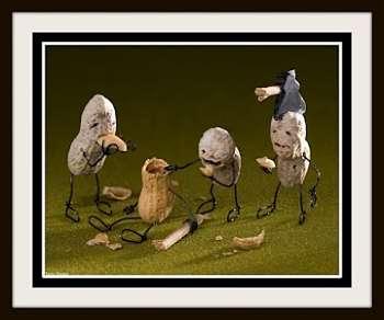 Toca Comer. Humor con cacahuetes . Marisol Collazos Soto, Rafael Barzanallana