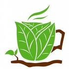 Toca Comer. Beneficios del café durante el estudio. Marisol Collazos Soto, Rafael Barzanallana