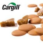 Toca Comer. Nuevo dulce de Cargill, caramelo con aspecto de chocolate. Marisol Collazos Soto, Rafael Barzanallana