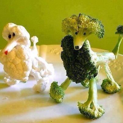 Toca Comer. Perros de coliflor y brócoli. Marisol Collazos Soto, Rafael Barzanallana