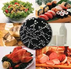 Toca Comer. Papel que detecta contaminación en alimentos. Marisol Collazos Soto, Rafael Barzanallana