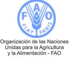 Toca Comer. FAO agricultura. Marisol Collazos Soto, Rafael Barzanallana