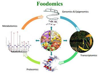 Toca Comer. Foodómica permitirá alimentos personalizados. Marisol Collazos Soto, Rafael Barzanallana