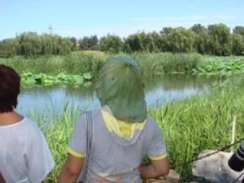 Toca Comer.  Hoja de calabaza para protegerse del sol. Marisol Collazos Soto, Rafael Barzanallana