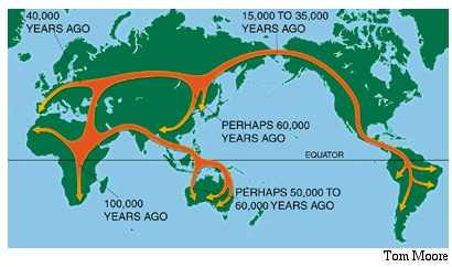 Toca Comer. Una mutación de hace 180000 años permitió a los humanos a convertirse en vegetarianos y salir de  África. Marisol Collazos Soto, Rafael Barzanallana