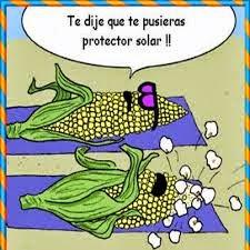 Toca Comer. Maíz al sol . Marisol Collazos Soto, Rafael Barzanallana