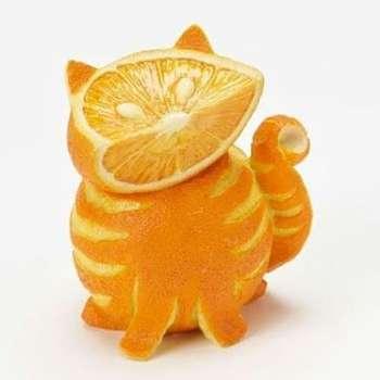 Toca Comer.   Naranja gato. Marisol Collazos Soto, Rafael Barzanallana