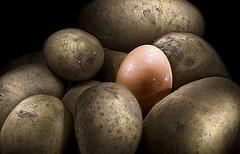 Toca Comer. Patatas fritas no transgénicas, como todas. Marisol Collazos Soto, Rafael Barzanallana